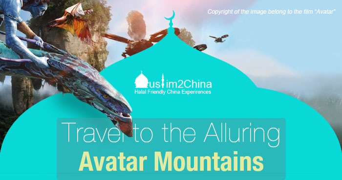 Travel to the Alluring Hallelujah Mountains
