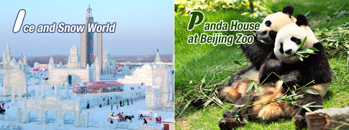 Ice and Snow World, Panda House at Beijing Zoo